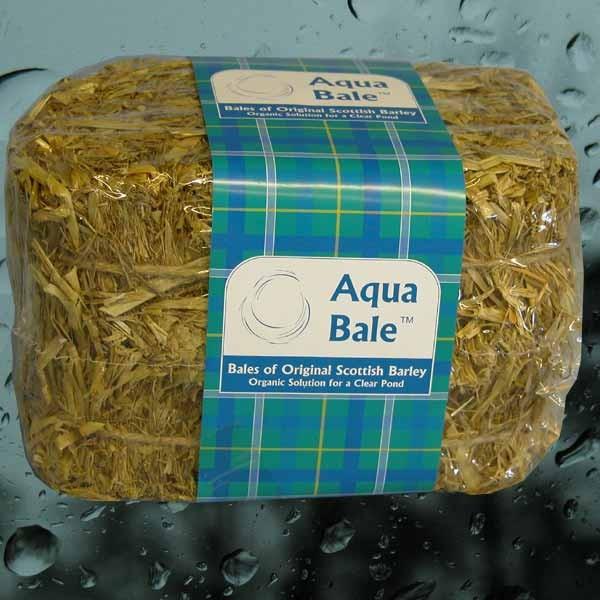 Aqua bale scottish barley water clarity for Straw bale house cost calculator